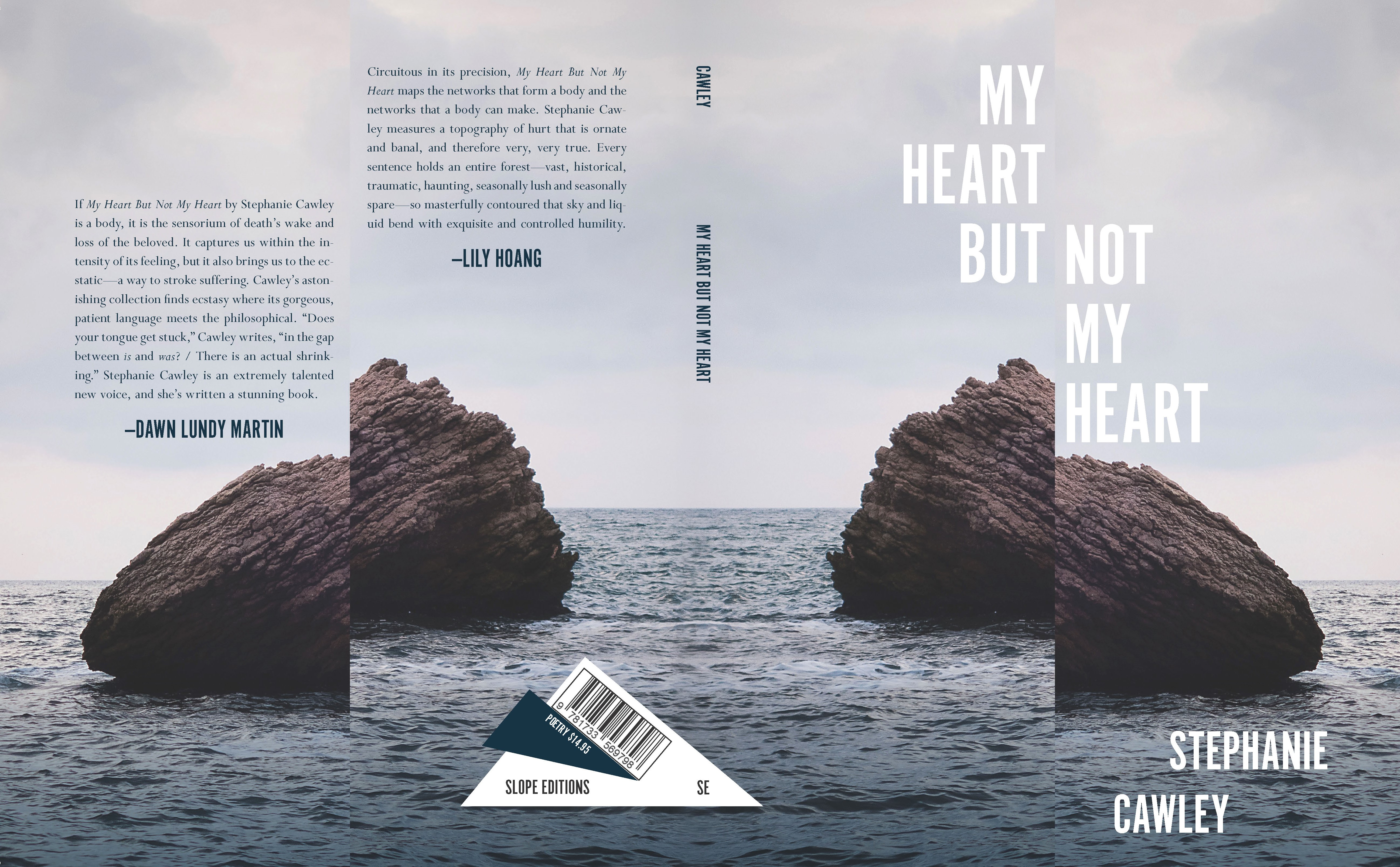 My Heart But Not My Heart book cover