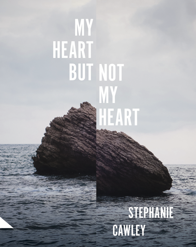 Cover of My Heart But Not My Heart
